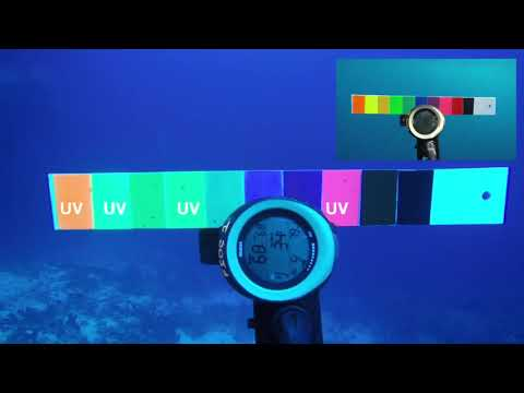 Colour Theory - How Colours Change In The Water