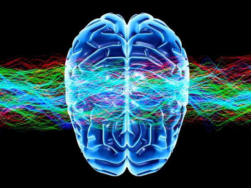 Brain to Text Communication 1
