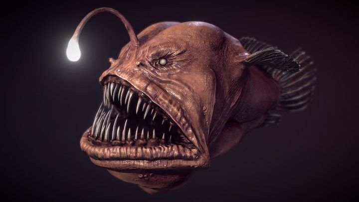 Deep Sea Anglerfish that Resembles an Alien Creature Washed up on a California Beach