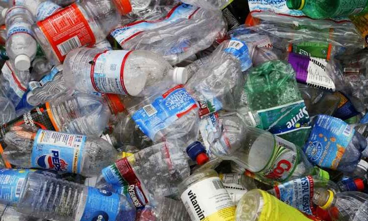 Scientists Convert Plastic Waste Bottles into Vanilla Flavoring Using Genetically Modified Bacteria