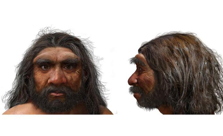 The Dragon Man, Homo Longi: the Most recent addition to the Human Family Tree