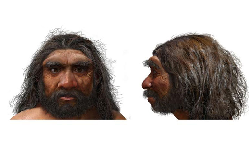The Dragon Man, Homo Longi the Most recent addition to the Human Family Tree