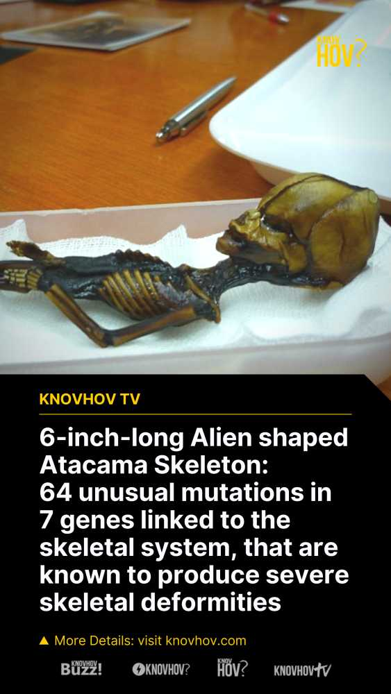 The Tragic Reality of 6-inch-long 'Alien' Skeleton Discovered in Atacama, Chile