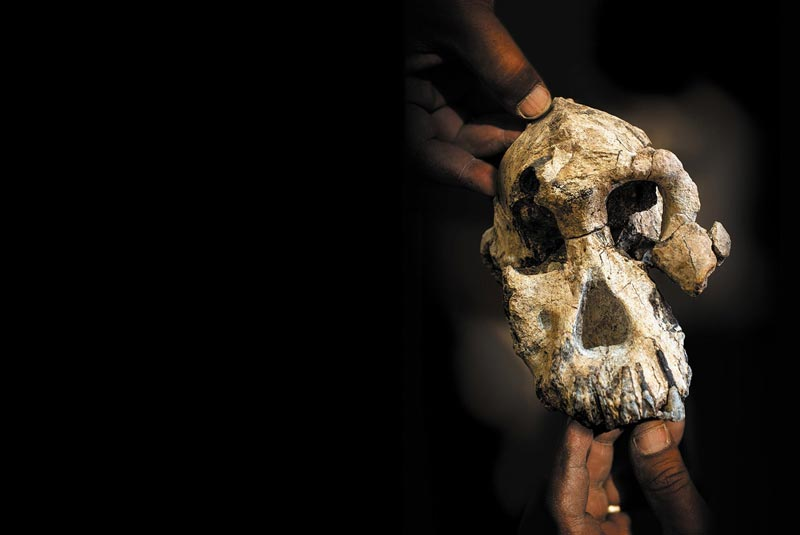 Who is the earliest known human ancestor